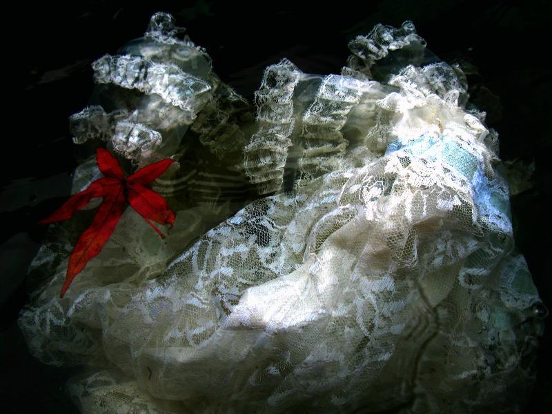 Lace slip 2006
