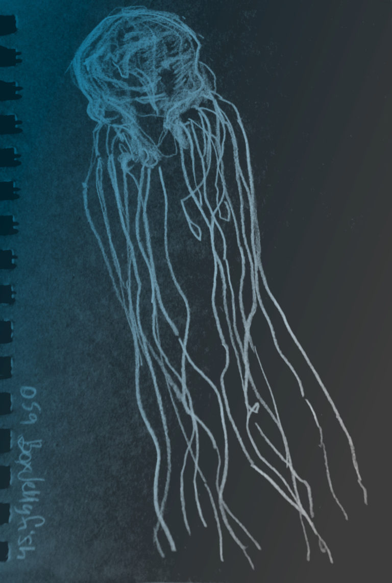 box jellyfish research paper Box jellyfish research paper the box jellyfish is known as one of the most venomous creatures in the world and has caused significant injuries and fatalities.